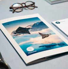 Flyer, Brochure